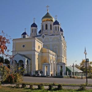 Елецкая епархия прокомментировала инцидент с избиением монахини